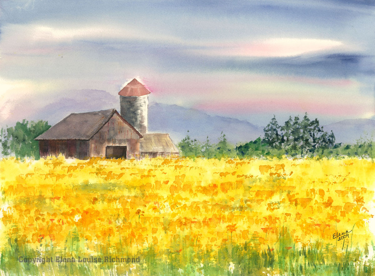 Mary's Barn in Daffodils